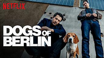 Dogs Of Berlin Netflix Offizielle Webseite