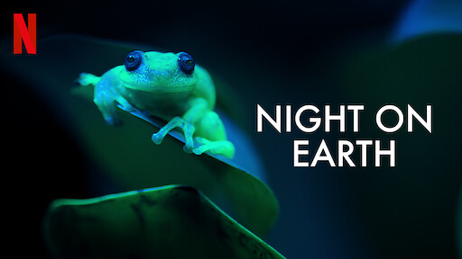 Night on Earth: Shot in the Dark | Netflix Official Site